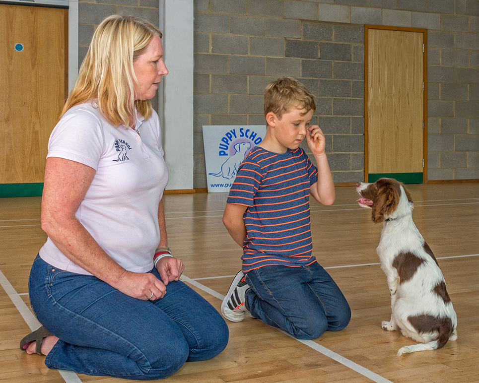 Puppy School class, Puppy training